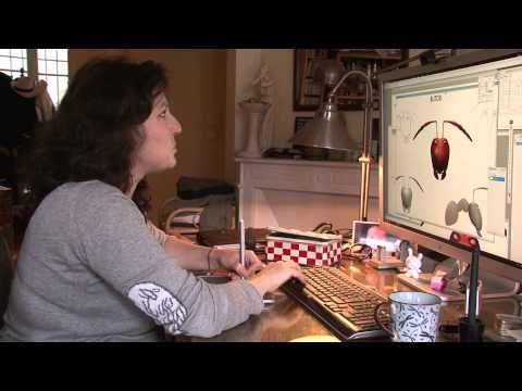 ▶ Making of Minuscule - Valley of the Lost Ants / Red ants - YouTube