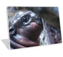 Baby Manatee Peek-a-Boo Laptop Skin