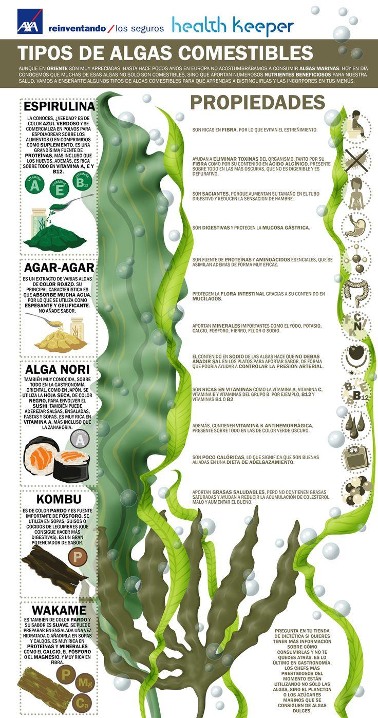 Aunque en oriente son muy apreciadas, hasta hace pocos años en Europa no acostumbrábamos a consumir algas marinas. Hoy en día conocemos que muchas de esas algas, no solo son comestibles, sino que aportan numerosos nutrientes beneficiosos para nuestra salud. Vamos a enseñarte algunos tipos de algas comestibles para que aprendas a distinguirlas y las incorpores en tus menús.