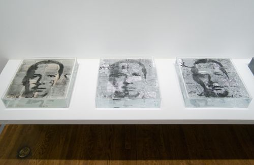 Oscar Muñoz, Narcisos en proceso (Narcissi in Process), 2010 (series 1994 and ongoing) Screenprinted charcoal powder on water, paper, Plexiglas vitrines