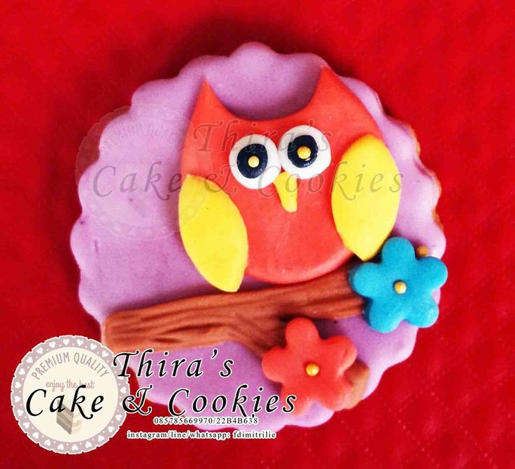 Owl themed cookies