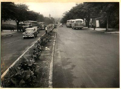 AHSP - Acervo fotográfico do Arquivo Histórico de São Paulo, 9 de julho 1959