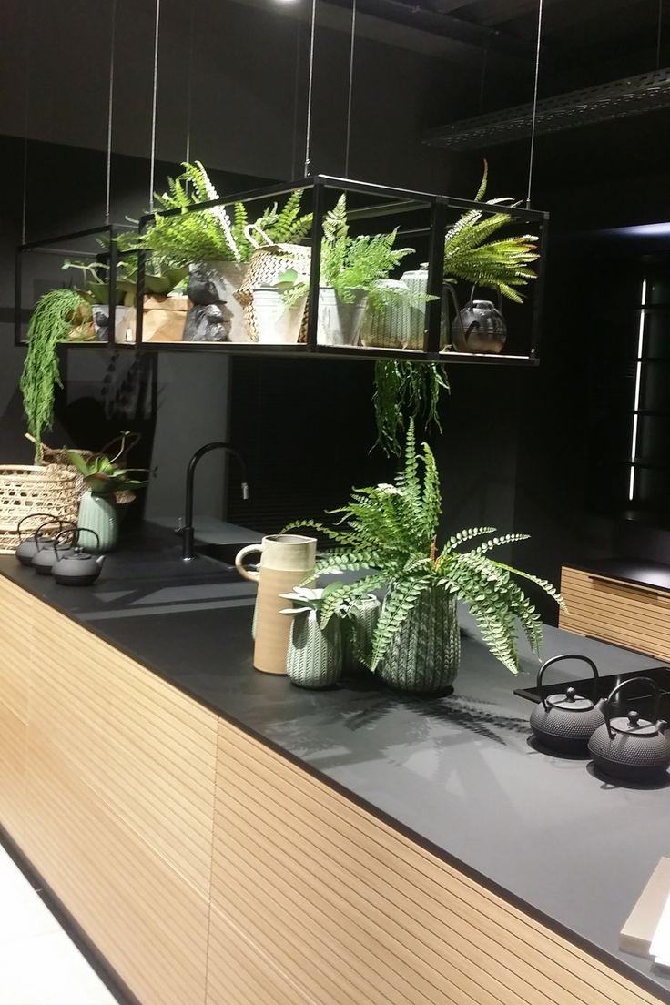 Cuisine En Véritable Bois Plan Noir étagères Suspendues Au