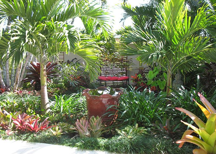 tropical courtyard garden design google search gardens