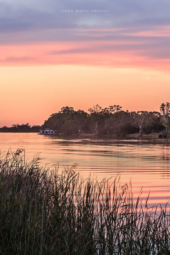 Houseboat among the gumtrees  at sunset, Murray River South Australia by John White Photos