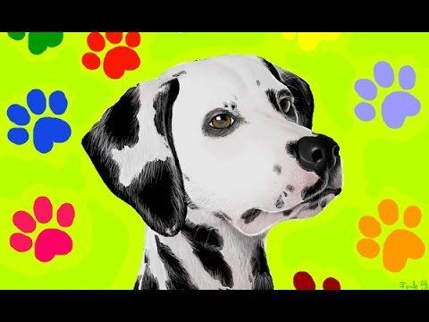 dalmatian speedpaint dalmata cachorro dog 101 dalmatian