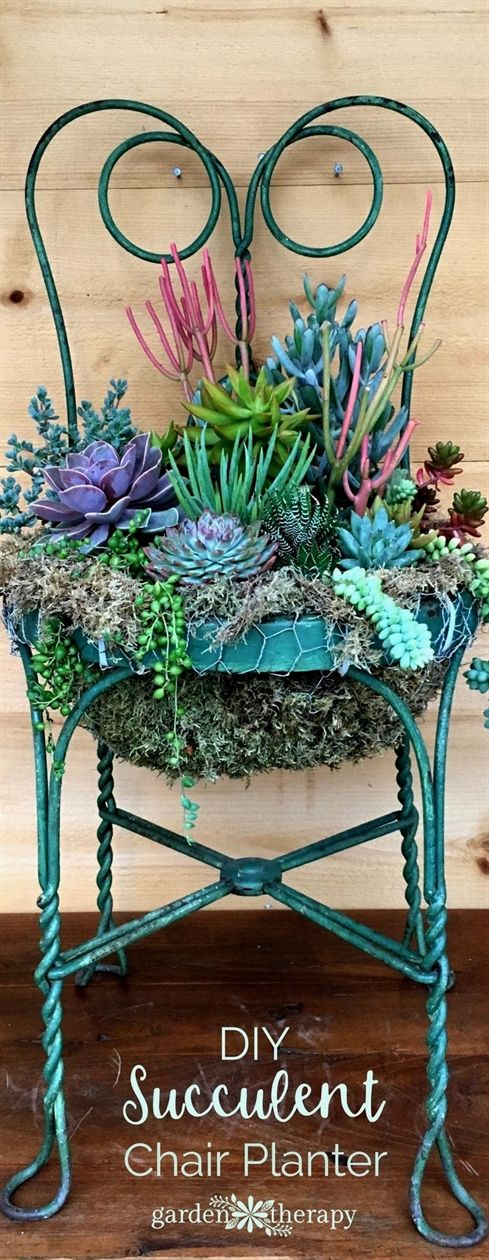 Photo of Set a Place in the Garden for a Succulent Chair Planter