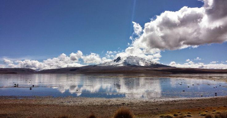 Parque Nacional Lauca (Chile): Não faltam belos destinos de ecoturismo no Chile, e um dos mais impressionantes deles é o Parque Nacional Lauca, no extremo norte do país, ao lado da fronteira com a Bolívia. Situado a uma altura média de 4.500 metros sobre o nível do mar, o lugar reúne, em seus quase 140 mil hectares, uma série de lindos vulcões nevados, famílias de vicunhas, lagoas, flamingos, montanhas, lhamas, sítios arqueológicos e vilarejos pitorescos. Os destaques do Lauca são os…