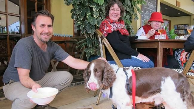 The ultimate in #dogfriendly: Australian restaurant bans kids, allows dogs| Cairns Post