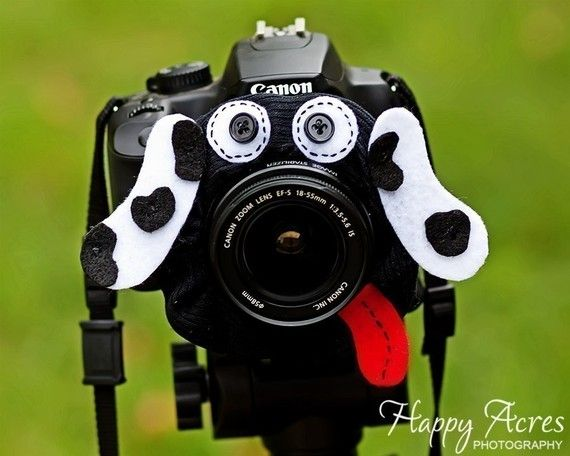 $13 Lens Bling - perfect for photographing kids