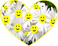 Happy, Face, Daisy, Flowers, Smiley