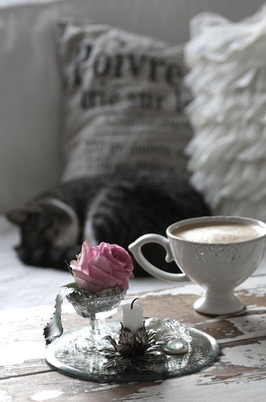 ~*~: Cat, Teas Time, Cups, Shabby Chic, Coffee, Grey, Pink Rose, Memorial Mornings, Amser Memorial
