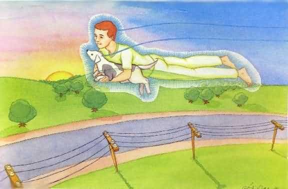 Fig. 23: Em alguns casos, o animal projetado pode até mesmo realizar vôos extrafísicos com seu dono, também projetado.  Leia mais em : Viagem ao Espaço Interior #Animal #WagnerBorges #Espiritualidade #AssistenciaEspiritual #ViagemAstral #ProjecaoAstral #ExperienciasForadoCorpo #ProjecaoDaConsciencia  #ViagemEspiritual #EFC #OBE #OutOfBodyExperiences #AstralProjection #VidaAposAMorte #Chakras #Chacras #AstralVoyage