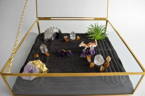 Tiny Dragon Zen Garden Meditation Box Goniatite Fossil Gemstone Glass Curio Crystal Garden In 2020 Mini Zen Garden Miniature Zen Garden Crystal Garden