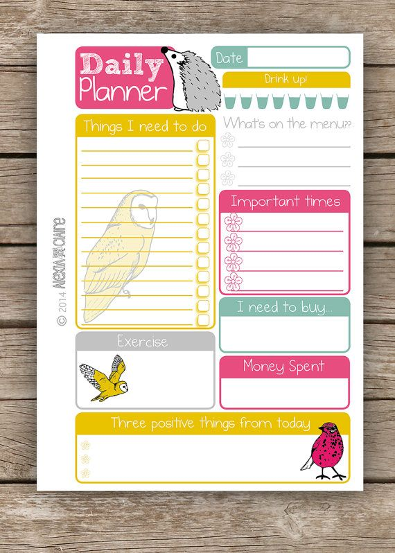 Daily Planner  5 x 7 size  Cute hand drawn animal por AlexiaClaire