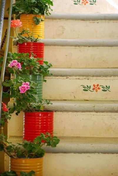 geraniums, painted cans, stairs.