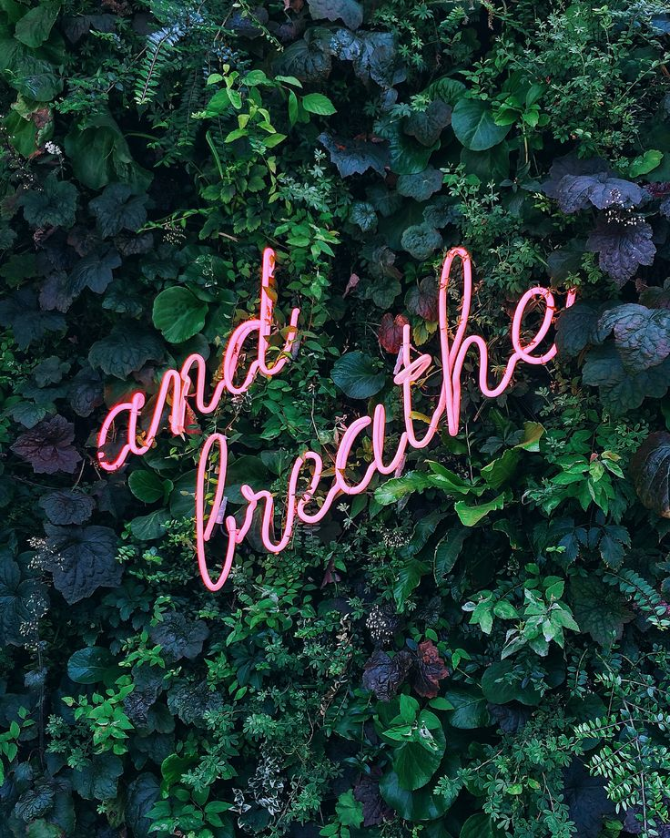 """And Breathe"" neon sign at the Kimpton DeWitt Hotel in Amsterdam. Photographed by Laura Ghitoi. #AndBreathe #NeonSign #KimptonDeWitt #KimptonHotels #HotelLife #AmsterdamHotels #BeautifulHotels #NeonQuote"