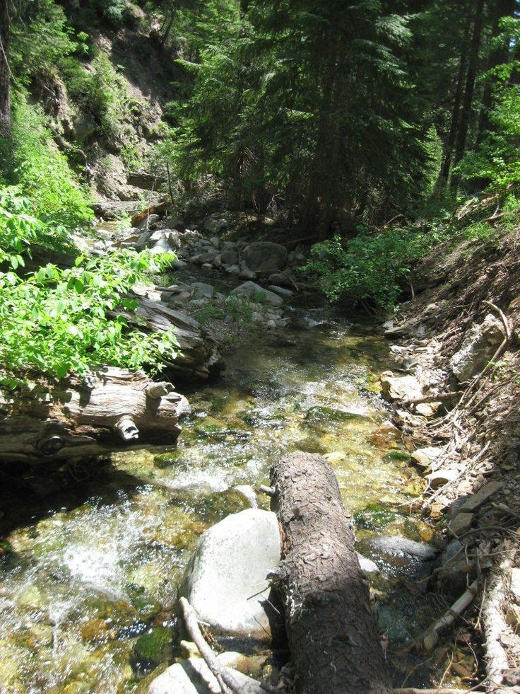 60 Acre Gold Mining Claim Missouri Creek Nevada County