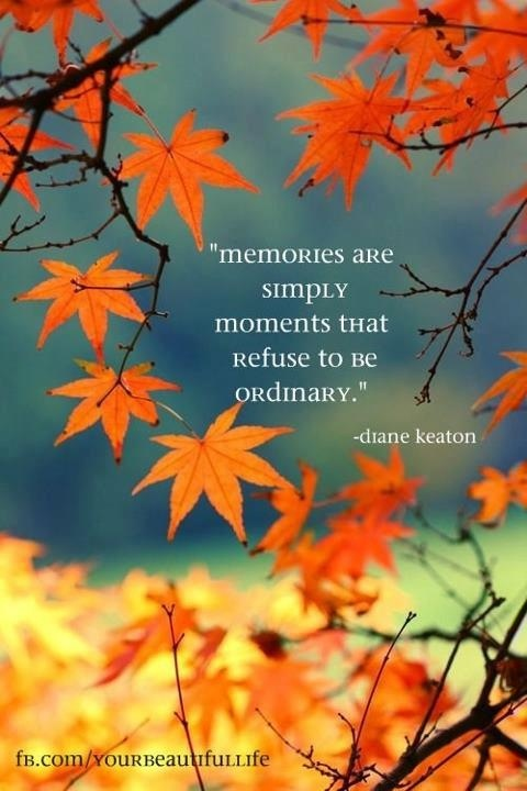 Memories are simply moments that refuse to be ordinary.