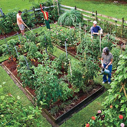 Planting a Vegetable Garden: A Monthly Guide | MyRecipes.com