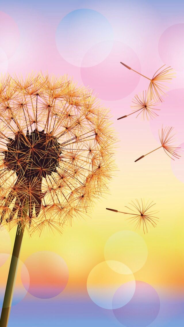 Free photo Flower Dandelion Summer Spring Clock Nature Plant Max