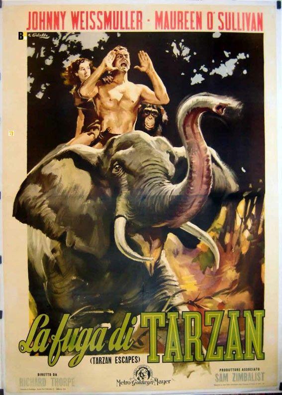 Pin By Raimundo Vieira On Jungle Kings And Queens Iii Tarzan Tarzan Movie Movie Posters