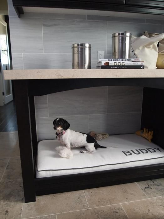 Built-in under cabinet dog bed. This would work great in a laundry room or even a bedroom.