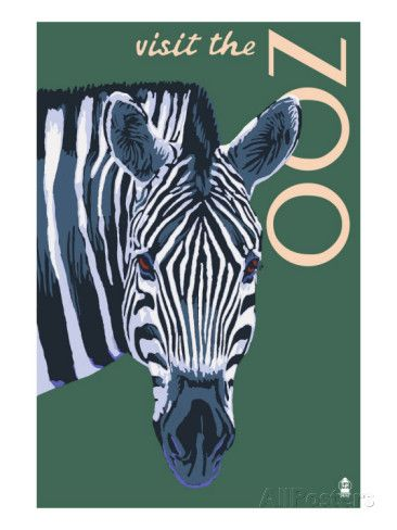 Visit the Zoo - Zebra Profile, c.2009 Posters by Lantern Press at AllPosters.com