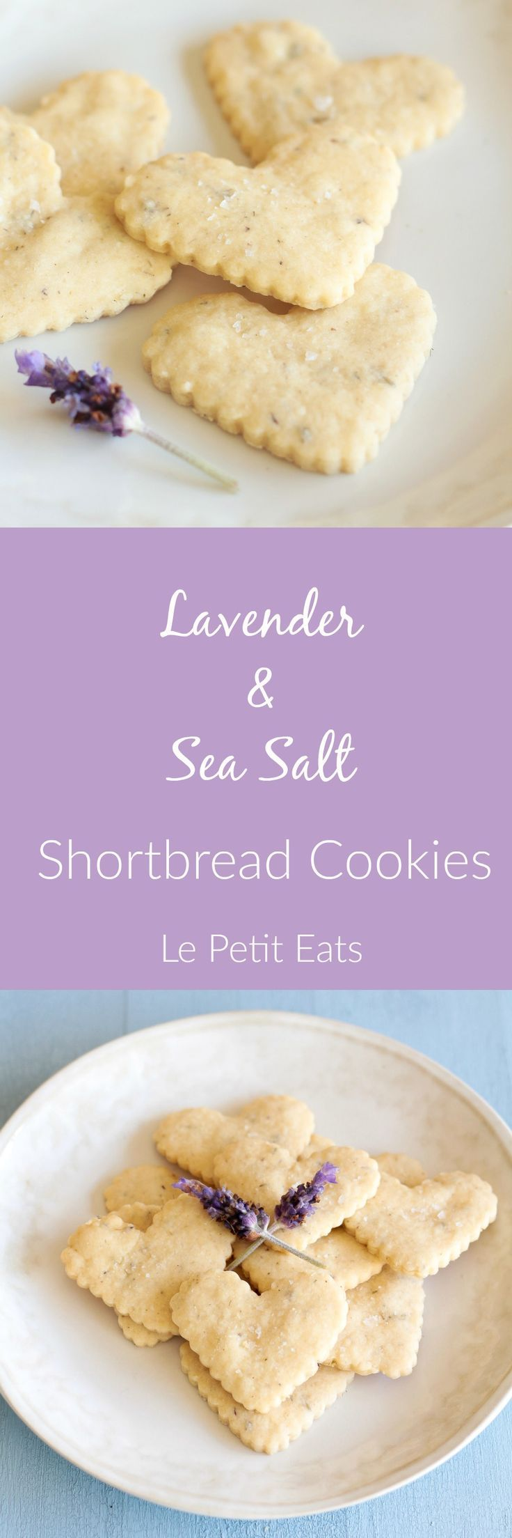Lavender Sea Salt Shortbread Cookies are classically simple, fragrant treats that you will want to make time and time again.