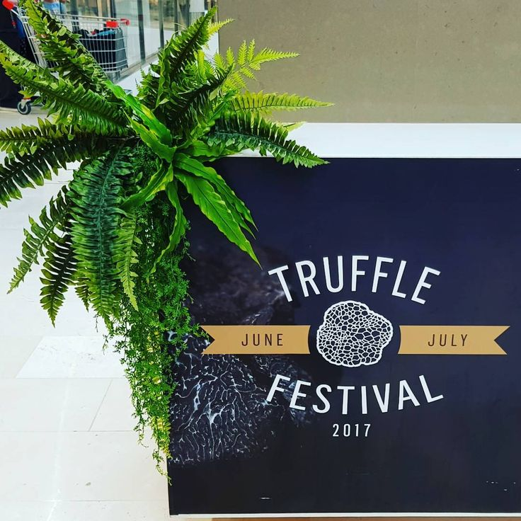 Come get yer truffle on at @westfieldbelconnen! Greenery supplied by us!