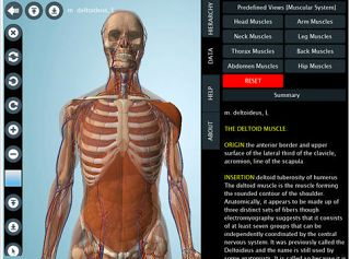 7 Wonderful iPad Apps to Learn about Human Body in 3D