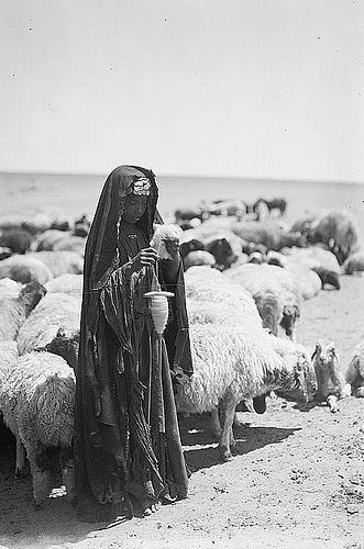 """original image of a Bedouin girl sheep... :Shepherdess spinning""""... is from the Matson collection. The image, taken circa 1934-1939...."""