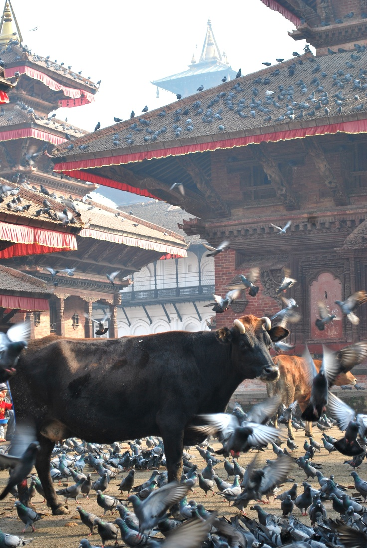 Kathmandu, Nepal - awesome snap at the central square