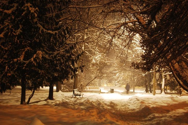 Csíkszereda, winter