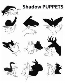 Shadow puppets! Come and try these out in our popular exhibit, Shadow Safari!