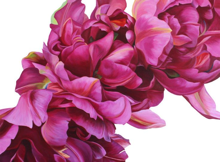 Vibrant oversized floral artworks by emerging artist Freya Powell. Love the colour sand details of this original artworks. Read her story and see more of her work by clicking on the pic above.