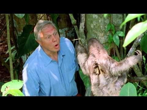 Sir David Attenborough At 90! - BBC Earth