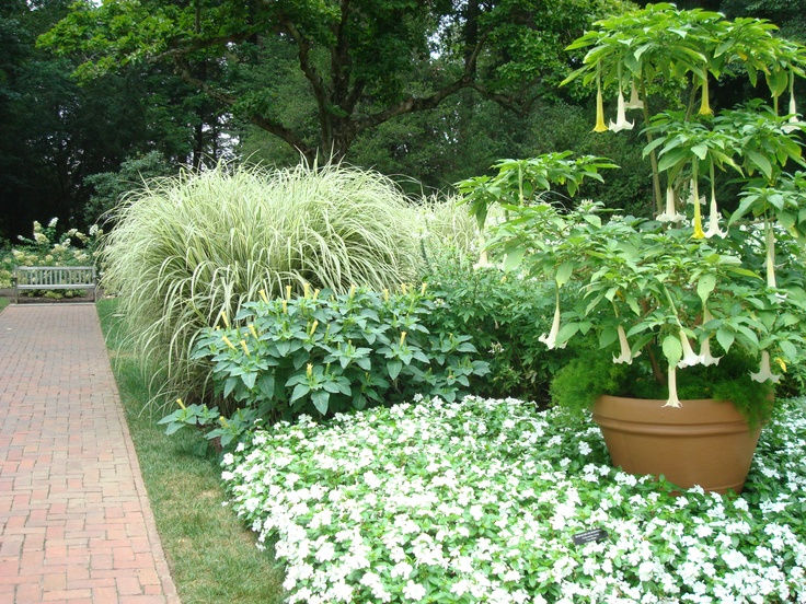 28 best landscaping images on pinterest landscape for Landscaping longwood