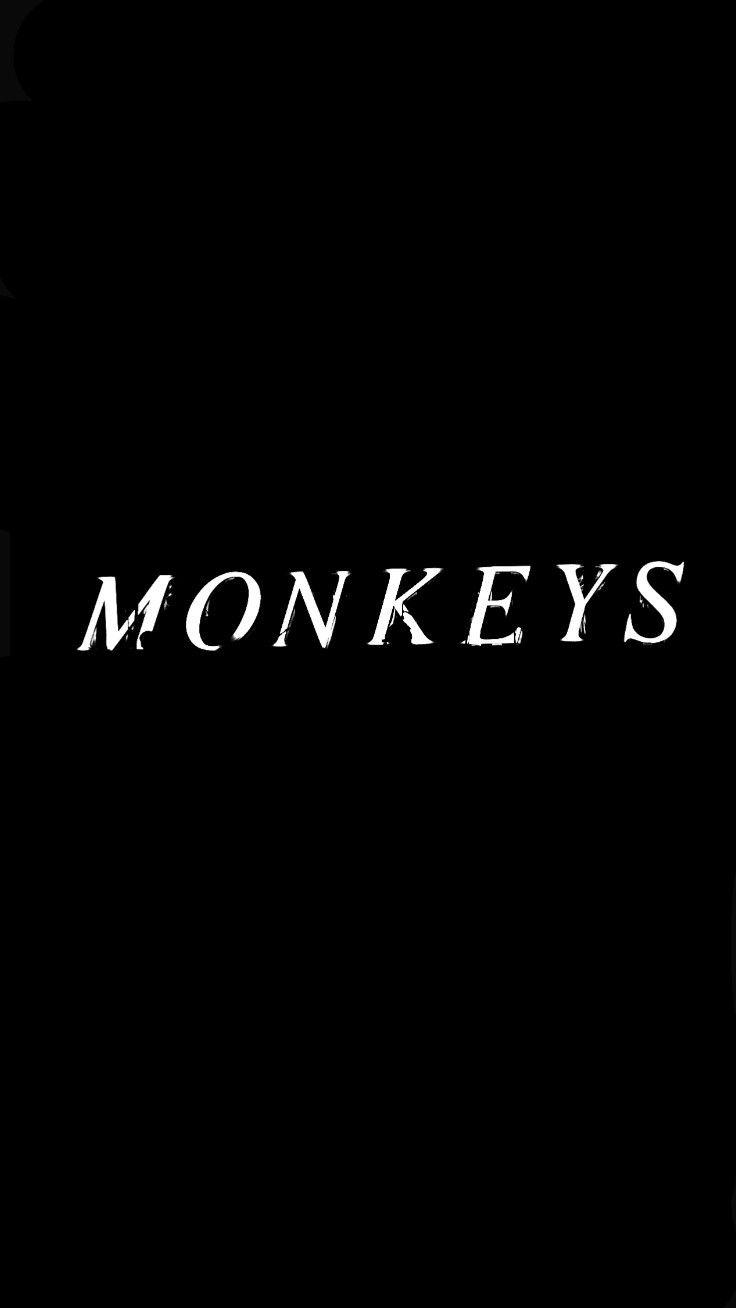 M O N K E Y S Arcticmonkeys Tbhc Fondo De Pantalla De Arctic Monkeys Ideas De Fondos De Pantalla Iphone Fondos De Pantalla