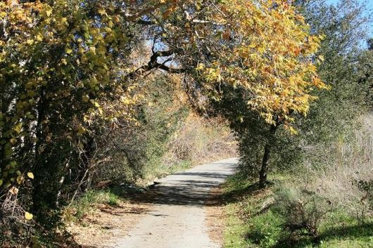 Sycamore Park to Deer Canyon Preserve (AnaheimHills)