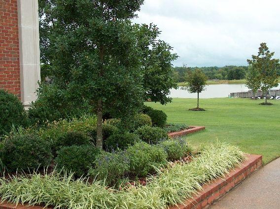 Best 25 low maintenance landscaping ideas on pinterest for Easy to maintain landscaping ideas