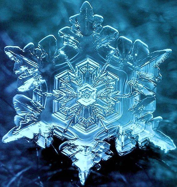 snowflake. Microscopic
