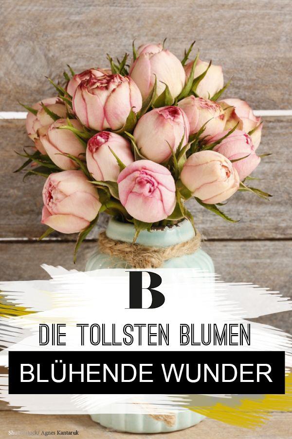 Blühende Wunder: Blumensträuße Für Den Frühling