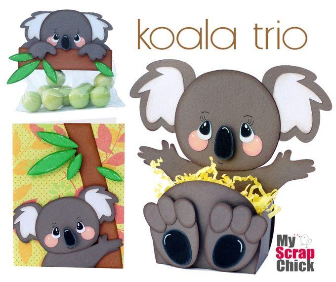 Koala Belly Box Trio: click to enlarge