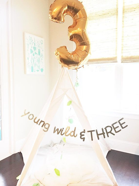 Hey, I found this really awesome Etsy listing at https://www.etsy.com/listing/508843318/young-wild-and-three-banner-young-wild