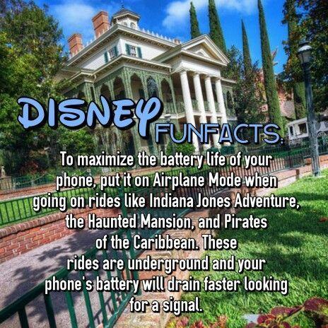 Disney World cell phone tip.