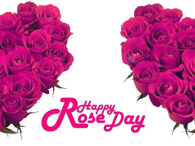 Hindi Rose Day SMS Latest Romantic Messages Shayari Rose Day Date ...