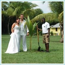 find this pin and more on destination weddings honeymoons at nisbet plantation beach club nevis