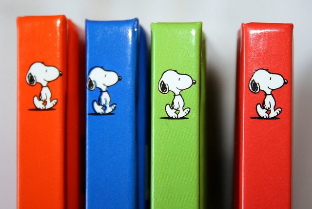 Classroom materials: Snoopy, too cool!