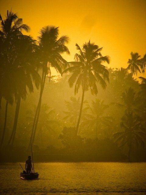 Good Morning Sunshine.At  dawn.Suriname